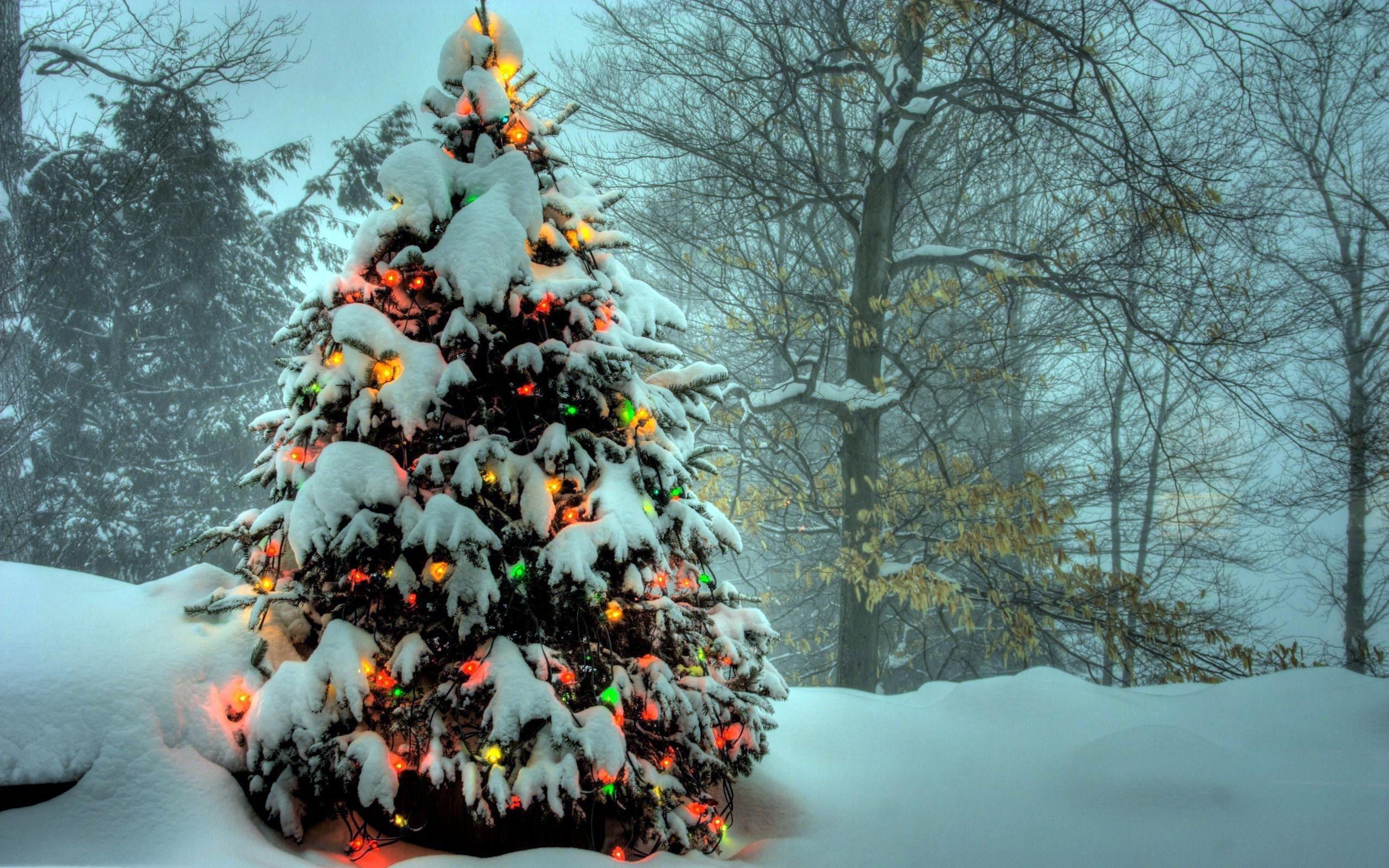 foto de Fond Ecran Gratuit Noel Pour Ordinateur – Gamboahinestrosa